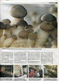 Printausgabe - Champignon Suisse - Page 3