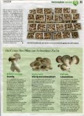 Printausgabe - Champignon Suisse - Page 4