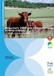 résultats 2009 des exploitations bovins viande - Chambre d ...