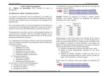 Tema 4. Tipos de presupuesto I.3 Objetivo de aprendizaje: SER ...