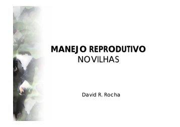 manejo reprodutivo novilhas - Grupo de Pesquisa em Biologia da ...