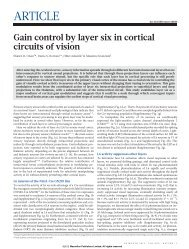 Gain control by layer six in cortical circuits of vision