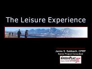 The Leisure Experience