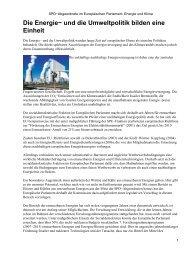 SPD-Abgeordnete im Europäischen Parlament: Energie und Klima