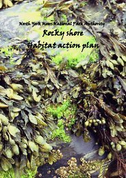 Rocky shore Habitat action plan - North York Moors National Park