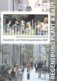 Regensburg Plant & Baut, Heft 8: Haushalts - Statistik.regensburg.de