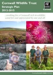 2. Cornwall Wildlife Trust - an overview