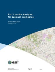 Esri Location Analytics for Business Intelligence