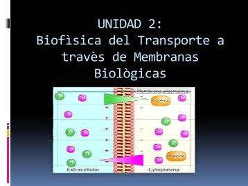 Teòrico de Transporte a travès de membrana celular 20-05-2013