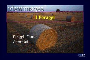 I Foraggi