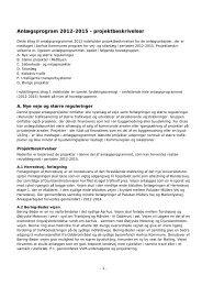 Anlægsprogram 2012-2015 - projektbeskrivelser