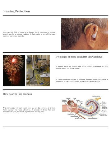 7] Hearing Protection - TLC is the first level of Career and Technical ...