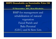 BMP for management and rehabilitation of natural ... - RT9 2011