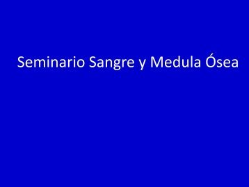 SEMINARIO6-2013