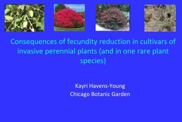 Consequences of fecundity reduction in cultivars of invasive ...