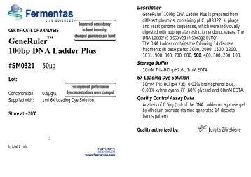 Generuler 226 162 100bp Dna Ladder Ready To Use Sm0243