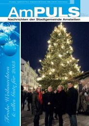 AmPuls2012-12.pdf - Gemeinde Amstetten