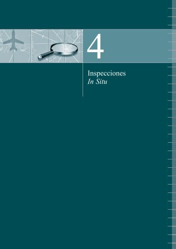 Inspecciones In Situ