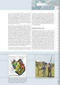 Inspecciones In Situ - Page 5
