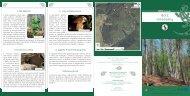 Borz tanösvény - Aggteleki Nemzeti Park