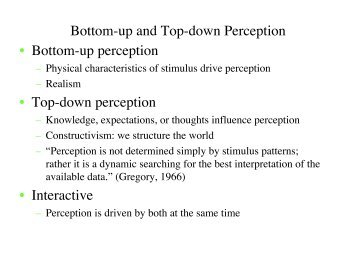 Bottom-up and Top-down Perception • Bottom-up perception • Top ...
