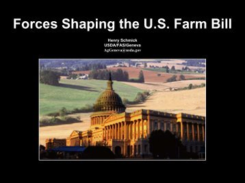 Forces Shaping the U.S Farm Bill - International Food & Agricultural ...