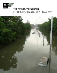Cloudburst Management Plan - Climate Change Adaptation