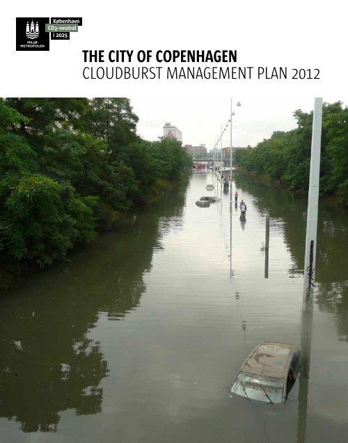 Cloudburst Management Plan - Climate Change Adaptation