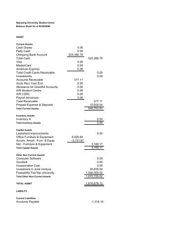 NUSU Unaudited Balance Sheet as of February 29-08 [PDF]