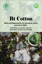 Bt Cotton - Enda-Diapol