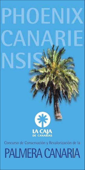 Untitled - Cabildo de Gran Canaria