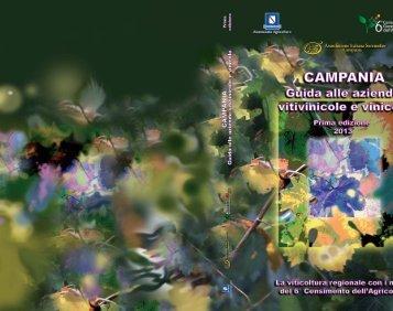 Scarica il file del volume - Regione Campania