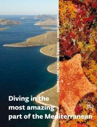 Here - UNDP Croatia