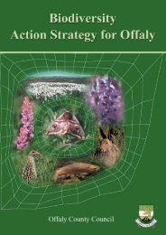 Biodiversity Doc.qxd - Offaly County Council