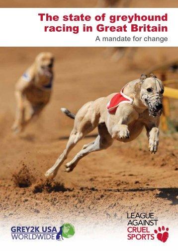 Greyhound-Report-2014