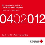 icons - Croix-Rouge luxembourgeoise