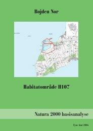 BILAG NATURA 2000 BASISANALYSE til afsnit 6 - Naturstyrelsen