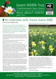 Wild About Gwent April 2012.pdf - Gwent Wildlife Trust
