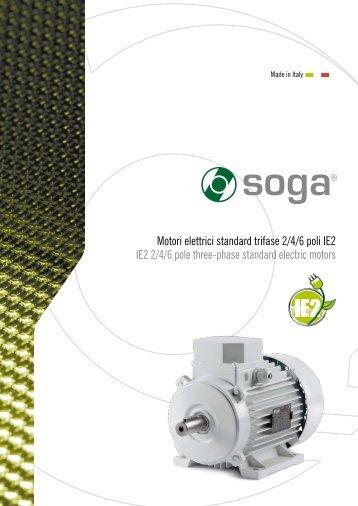 Motori elettrici standard trifase 2/4/6 poli IE2 IE2 2/4/6 pole ... - opis.cz