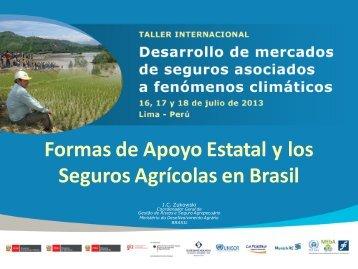 Formas de Apoyo Estatal y los Seguros Agrícolas en Brasil