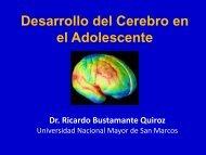 El desarrollo del cerebro en el adolescente