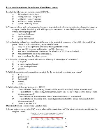 Medical Microbiology Lecture Notes Ppt