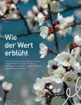 Der Weg zum Kilo(wattstunden)preis Schweizer Markthöhepunkte  ... - Page 6