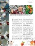 Der Weg zum Kilo(wattstunden)preis Schweizer Markthöhepunkte  ... - Page 7