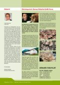 Champ_2008_2 - Champignon Suisse - Seite 2