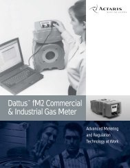 Dattus™ fM2 Commercial & Industrial Gas Meter - Burnerparts