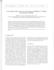 A new species of the Creatonotos transiens-group - Bonn zoological ...