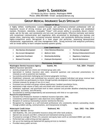Insurance Sales Professional   Front Runner Resume Writing  Sales Professional Resume