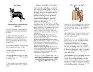 Dog Safety - Understand-A-Bull