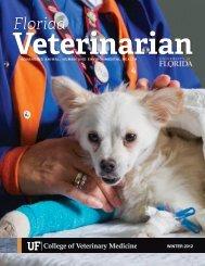 Florida Veterinarian, Winter 2012 (PDF) - University of Florida ...